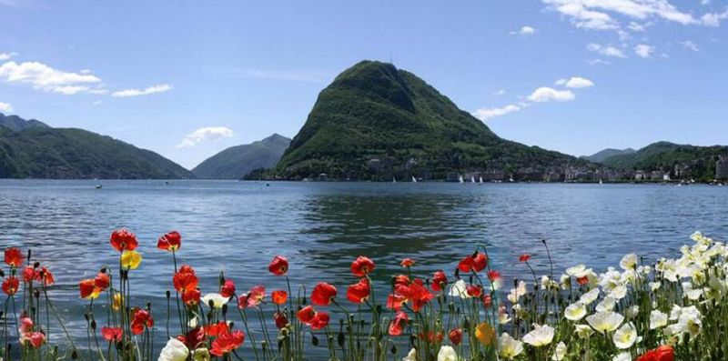 GIRASOLE - My Home in Como