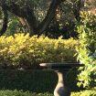 Il giardino lussuoso di Villa D'Este - Luxury Villa Cernobbio