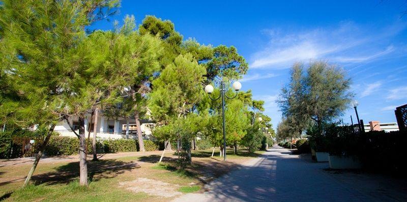 Pinetina Ingo  - Cerrano Apartments