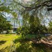 Viottolo per passeggiare nello splendido giardino - Villa Mito