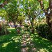 Sentiero che attraversa il rigoglioso giardino - Villa Elda