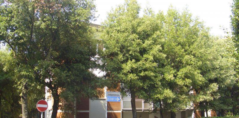 Rif.C1 - BARCACCINA 2 - Immobiliare Arcobaleno di Cecinini Elena