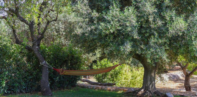 Trulli della Magnolia - Talea Collection