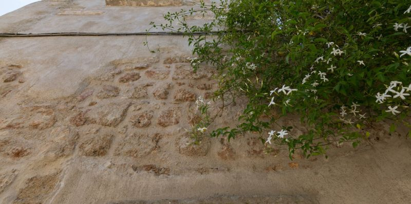 CASA STORICA FILIA - Caratteristica dimora storica per 4/Puglia - Weekey Rentals
