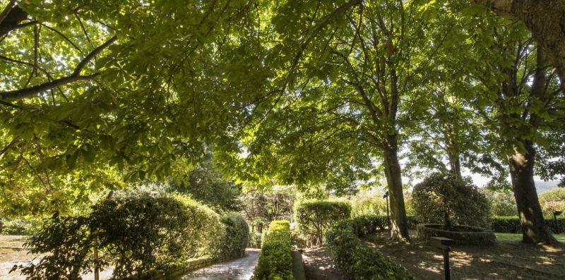 Villa Calandrina - Trevignano Romano, meravigliosa villa vista lago per 13 pax  - Weekey Rentals